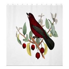 Bird On Branch Illustration Shower Curtain 66  X 72  (large)