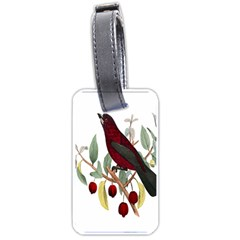 Bird On Branch Illustration Luggage Tags (one Side)