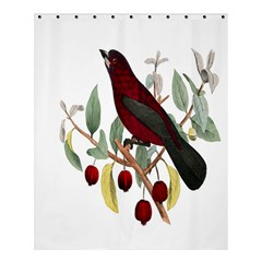 Bird On Branch Illustration Shower Curtain 60  X 72  (medium)