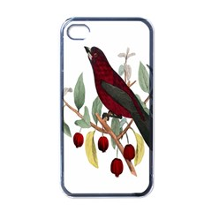 Bird On Branch Illustration Apple Iphone 4 Case (black)