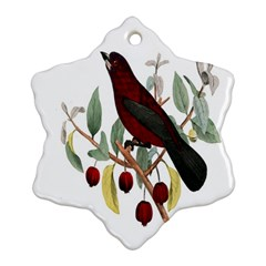 Bird On Branch Illustration Snowflake Ornament (two Sides)