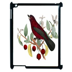 Bird On Branch Illustration Apple iPad 2 Case (Black)