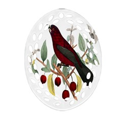 Bird On Branch Illustration Oval Filigree Ornament (two Sides)