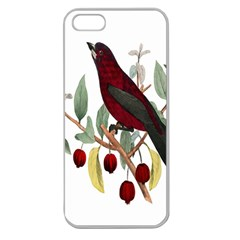 Bird On Branch Illustration Apple Seamless Iphone 5 Case (clear)