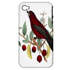 Bird On Branch Illustration Apple Iphone 4/4s Hardshell Case (pc+silicone)