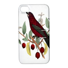 Bird On Branch Illustration Apple Iphone 4/4s Hardshell Case With Stand