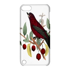 Bird On Branch Illustration Apple iPod Touch 5 Hardshell Case with Stand