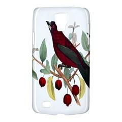 Bird On Branch Illustration Galaxy S4 Active