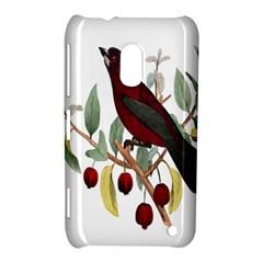 Bird On Branch Illustration Nokia Lumia 620