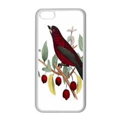Bird On Branch Illustration Apple Iphone 5c Seamless Case (white)