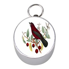 Bird On Branch Illustration Mini Silver Compasses