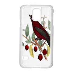 Bird On Branch Illustration Samsung Galaxy S5 Case (white)