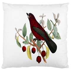 Bird On Branch Illustration Large Flano Cushion Case (two Sides)