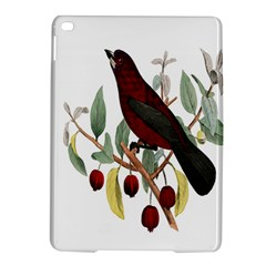Bird On Branch Illustration Ipad Air 2 Hardshell Cases