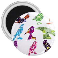Birds Colorful Floral Funky 3  Magnets