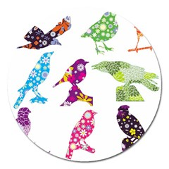 Birds Colorful Floral Funky Magnet 5  (Round)