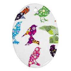 Birds Colorful Floral Funky Oval Ornament (two Sides)