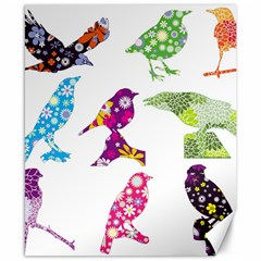 Birds Colorful Floral Funky Canvas 8  X 10