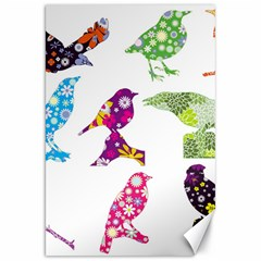 Birds Colorful Floral Funky Canvas 20  X 30