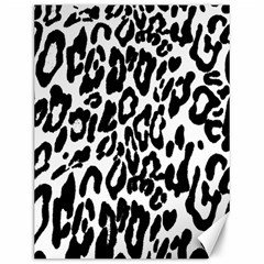 Black And White Leopard Skin Canvas 12  X 16