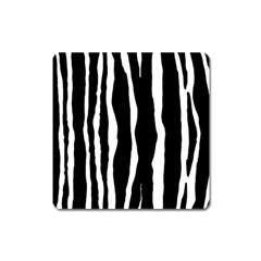 Zebra Background Pattern Square Magnet
