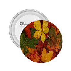 Colorful Autumn Leaves Leaf Background 2.25  Buttons