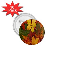 Colorful Autumn Leaves Leaf Background 1 75  Buttons (10 Pack)
