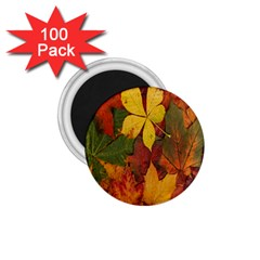 Colorful Autumn Leaves Leaf Background 1 75  Magnets (100 Pack)