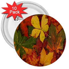 Colorful Autumn Leaves Leaf Background 3  Buttons (10 Pack)
