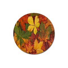 Colorful Autumn Leaves Leaf Background Magnet 3  (round)