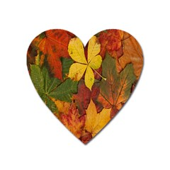 Colorful Autumn Leaves Leaf Background Heart Magnet