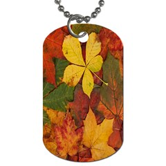 Colorful Autumn Leaves Leaf Background Dog Tag (one Side)