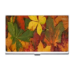 Colorful Autumn Leaves Leaf Background Business Card Holders