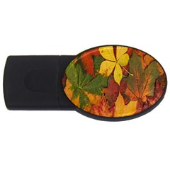 Colorful Autumn Leaves Leaf Background USB Flash Drive Oval (2 GB)