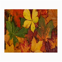 Colorful Autumn Leaves Leaf Background Small Glasses Cloth