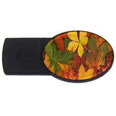 Colorful Autumn Leaves Leaf Background Usb Flash Drive Oval (4 Gb)