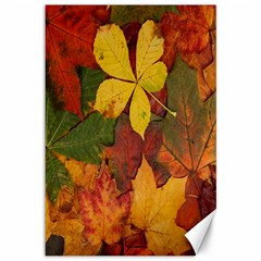 Colorful Autumn Leaves Leaf Background Canvas 12  X 18