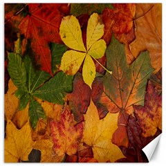 Colorful Autumn Leaves Leaf Background Canvas 16  X 16