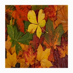 Colorful Autumn Leaves Leaf Background Medium Glasses Cloth