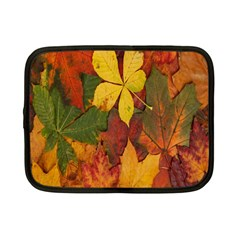 Colorful Autumn Leaves Leaf Background Netbook Case (small)