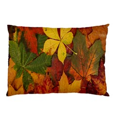 Colorful Autumn Leaves Leaf Background Pillow Case
