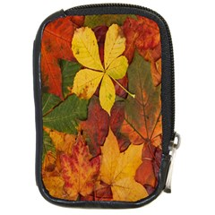 Colorful Autumn Leaves Leaf Background Compact Camera Cases