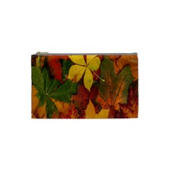 Colorful Autumn Leaves Leaf Background Cosmetic Bag (small)
