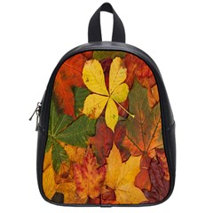 Colorful Autumn Leaves Leaf Background School Bags (Small)
