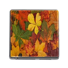 Colorful Autumn Leaves Leaf Background Memory Card Reader (square)