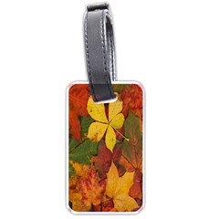 Colorful Autumn Leaves Leaf Background Luggage Tags (two Sides)