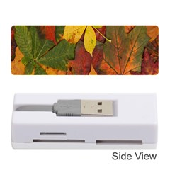 Colorful Autumn Leaves Leaf Background Memory Card Reader (stick)