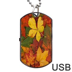 Colorful Autumn Leaves Leaf Background Dog Tag Usb Flash (two Sides)