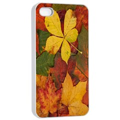 Colorful Autumn Leaves Leaf Background Apple Iphone 4/4s Seamless Case (white)