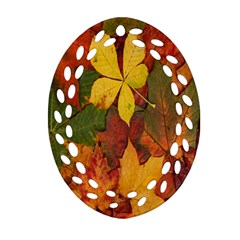 Colorful Autumn Leaves Leaf Background Oval Filigree Ornament (two Sides)